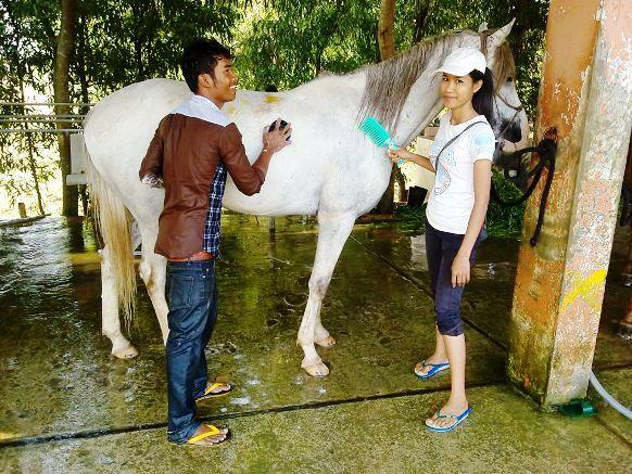 Office-tourisme_Happy-Ranch/Happy_Ranch-au-Cambodge